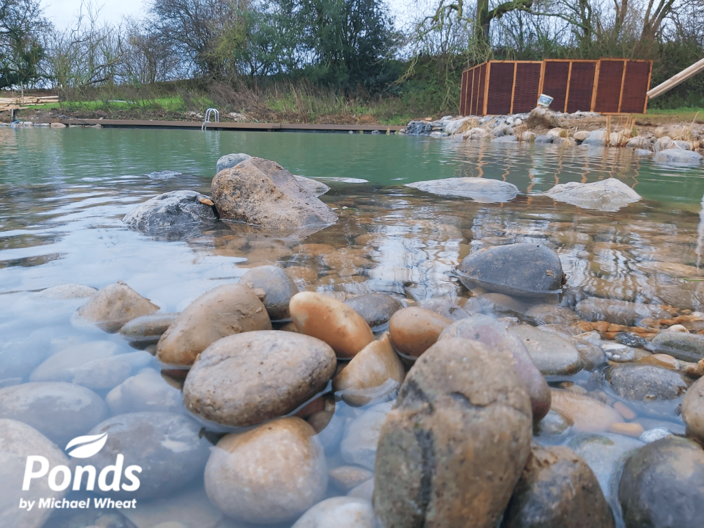 Swimpond Project - Canterbury - The Pond Immediately After Completion