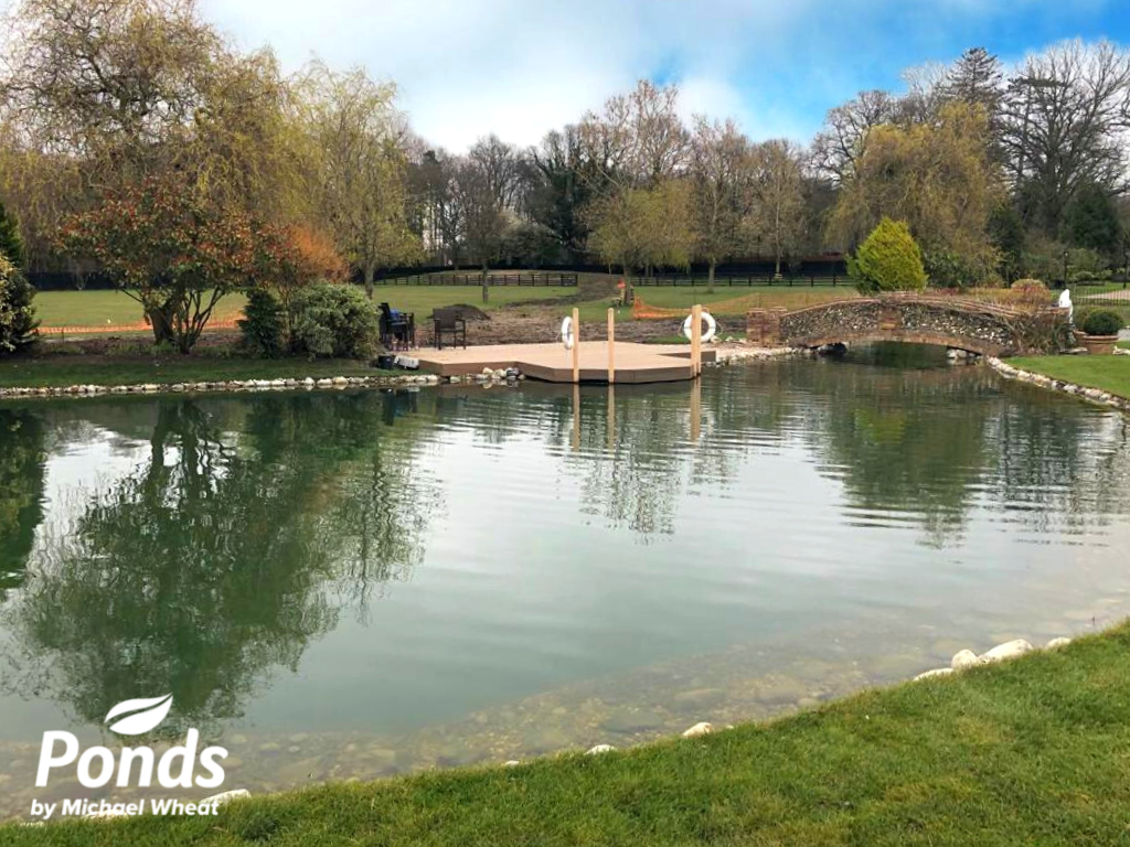 Swimpond Project - Windsor - The Pond Immediately After Completion