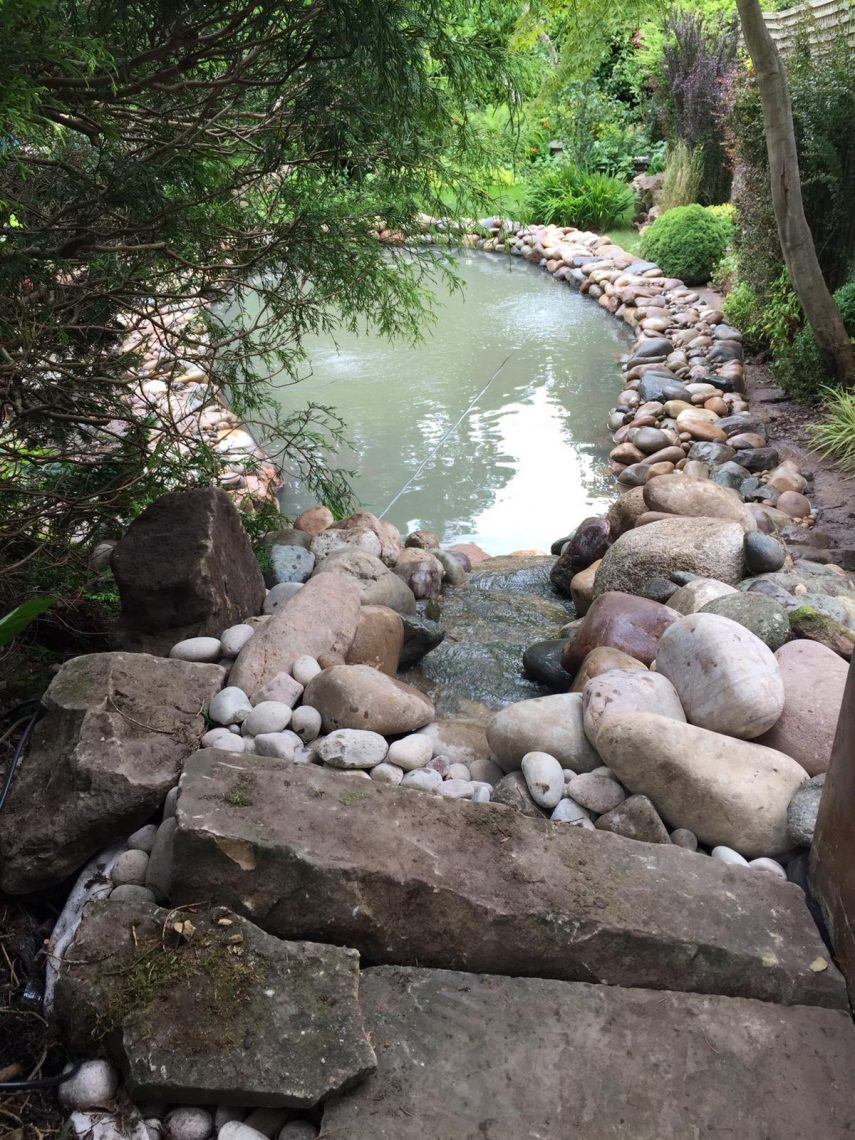 Self-built wildlife pond
