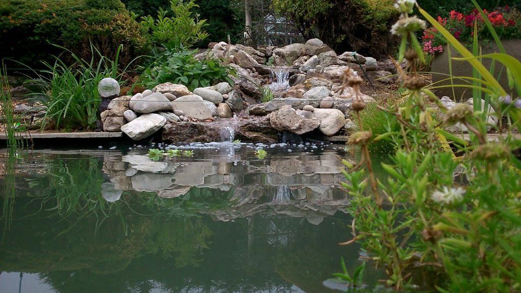 Self-built waterfall in swim pond