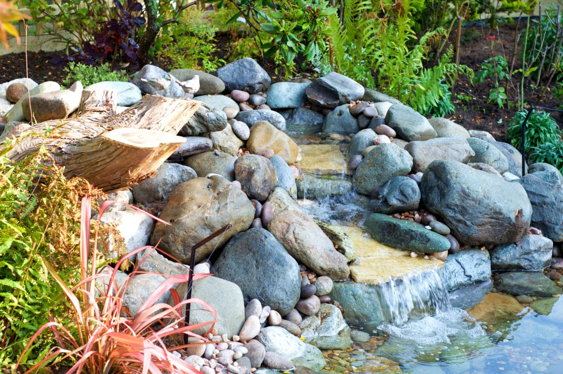 pond waterfall