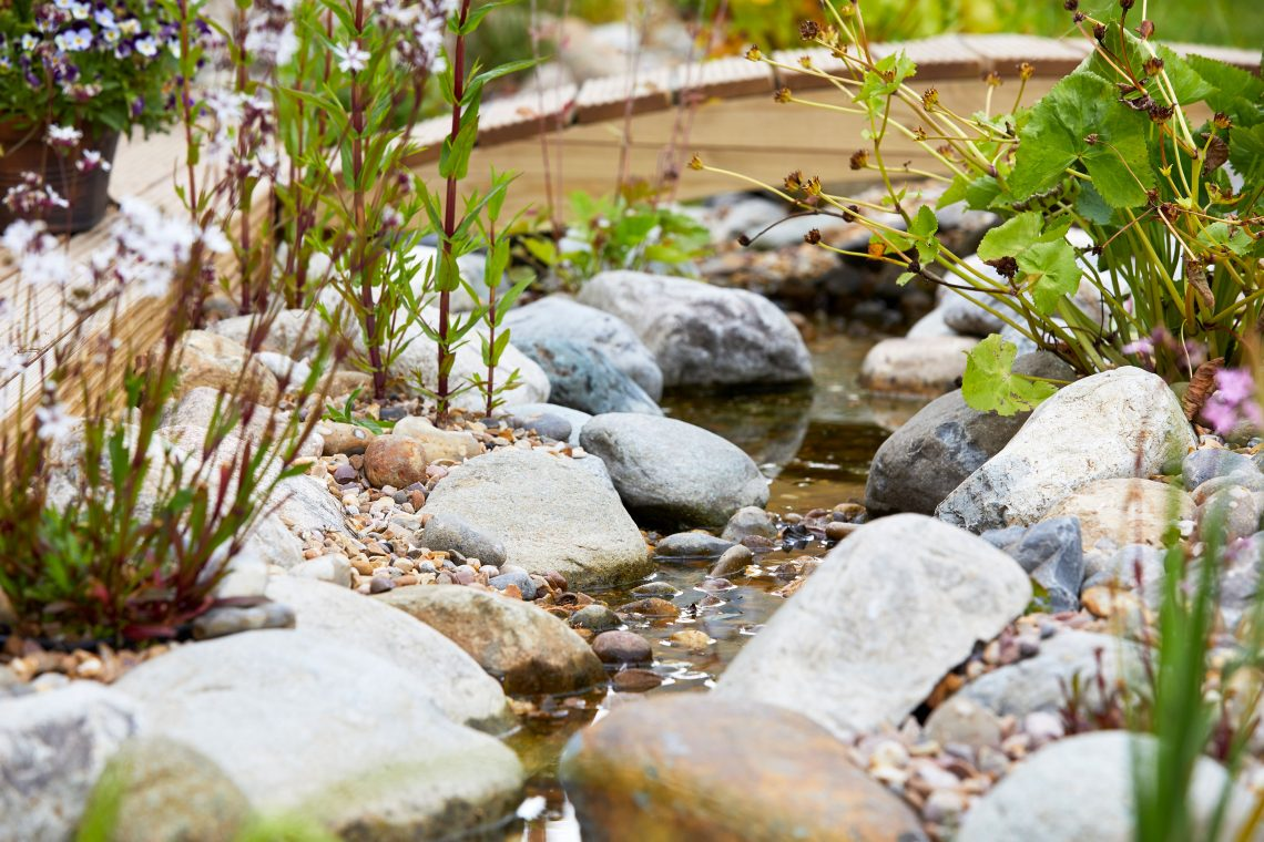 Wildlife pond rocks