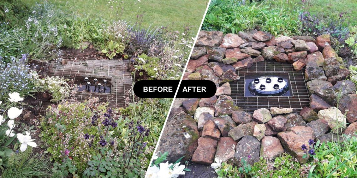 before and after pond clean
