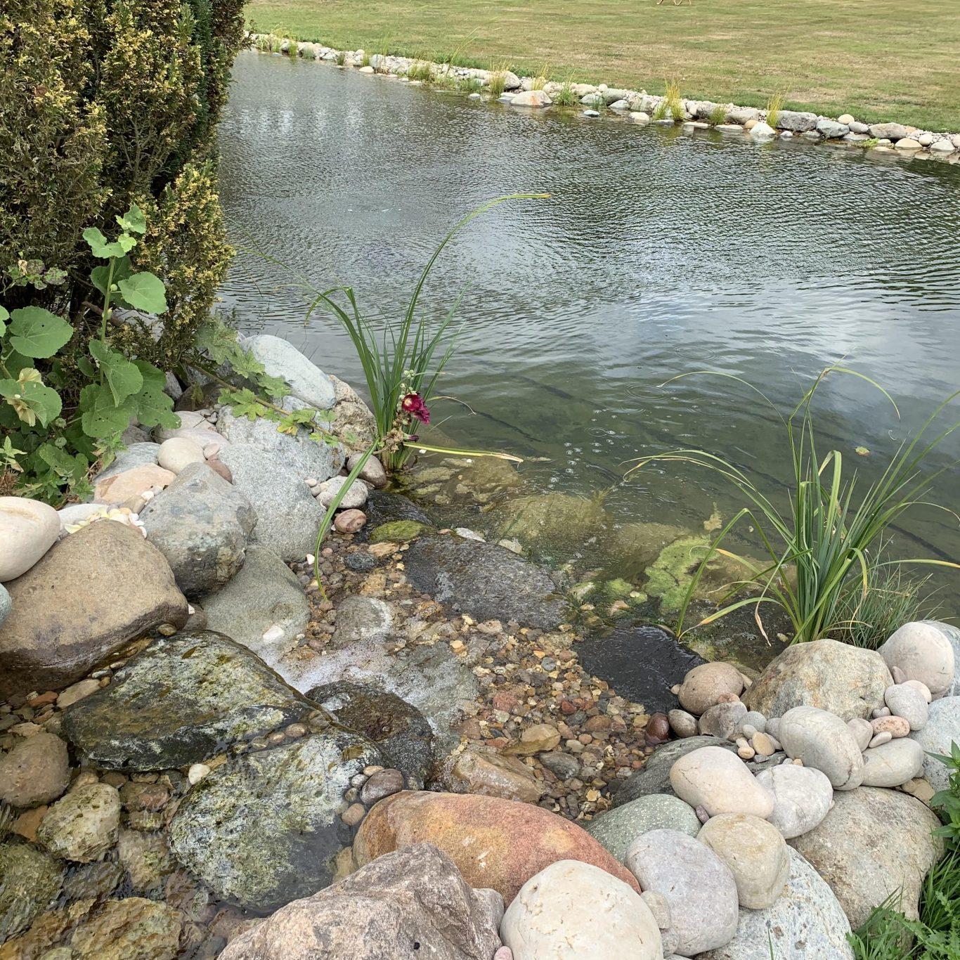 swimpond waterfall