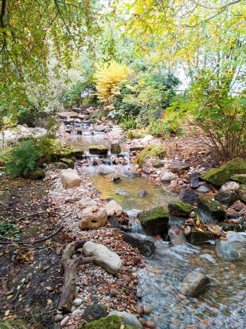 wildlife waterfall