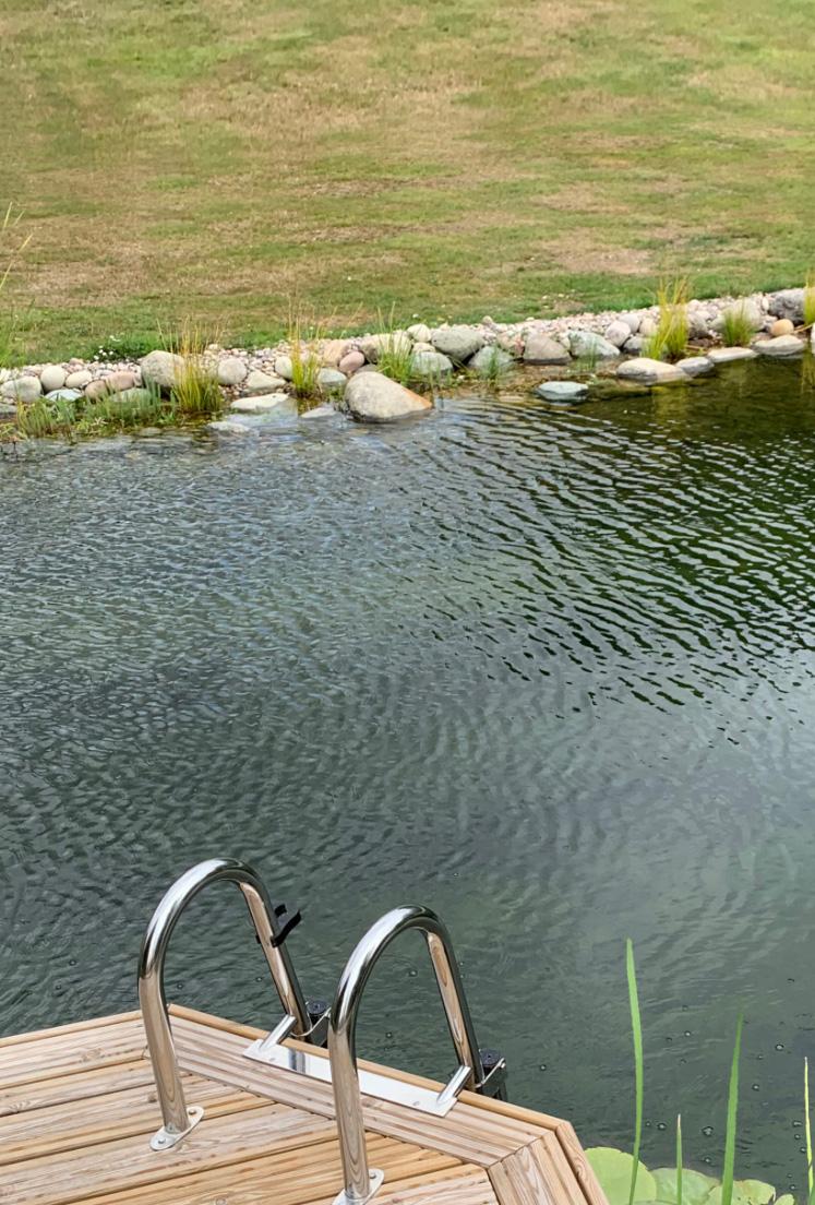 Swim Ponds