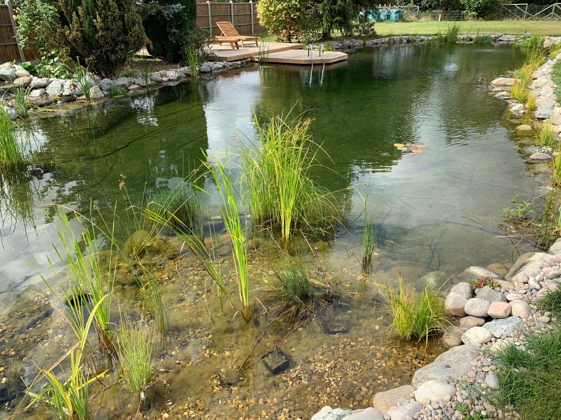Finished swim pond