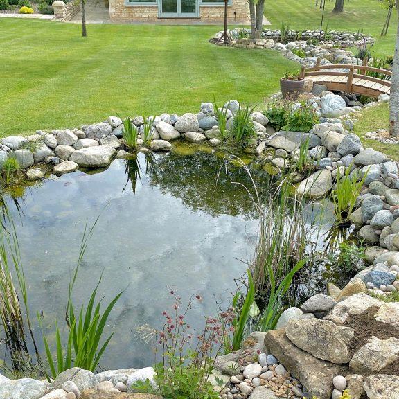 wildlife pond bridge